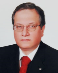 Judge Khaled Fathi